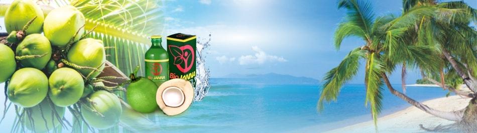 air kelapa biojanna